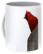 Northern Red Cardinal Coffee Mug
