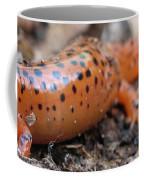 Northern Red Horizontal Coffee Mug