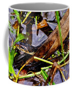 Northern Water Snake Coffee Mug