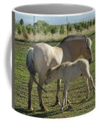 Norwegian Fjord Horse And Colt Coffee Mug