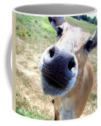 Nosey Cow Coffee Mug