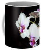 Loving Glance Coffee Mug