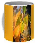 November Colors Coffee Mug