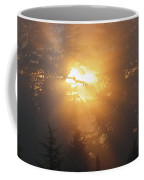 November Sunrise - 1 Coffee Mug