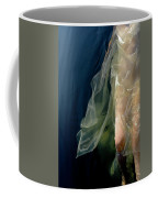 Damselfly Coffee Mug
