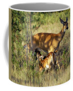Nursing Fawn Coffee Mug