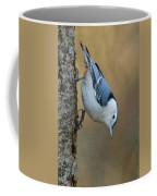 Nuthatch In Profile Coffee Mug