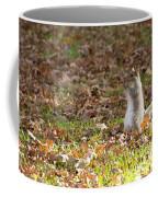 Nuts For Fall Coffee Mug