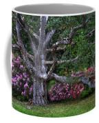 Oak And Rhodies Through Glass Coffee Mug