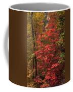 Oak Creek 3 Coffee Mug