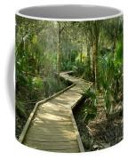 Oak Hammock Trail, Florida Coffee Mug