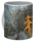 Oak Leaf In Ice  Coffee Mug