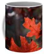 Oak Leaves Aglow Coffee Mug