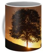 Oak Metal Coffee Mug