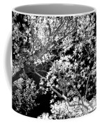 Oak Tree Light Coffee Mug