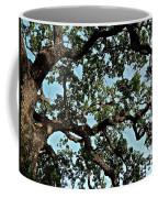 Oak Tree Three Coffee Mug