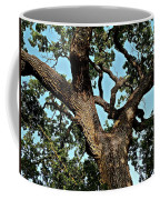 Oak Tree Two Coffee Mug