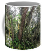 Oak Tree With Spanish Moss Coffee Mug