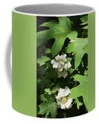 Oakleaf Hydrangea Floral Coffee Mug
