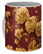 Oat Starch Grains Sem Coffee Mug