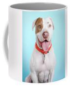 Obi-wan_6637 Coffee Mug