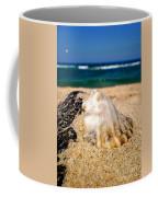 Ocean Beyond A Shell Coffee Mug