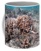 Ocean Fiji Coffee Mug