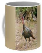 Oceola Turkey Coffee Mug