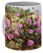 Ocotilla Wells Pink Flowers 2 Coffee Mug
