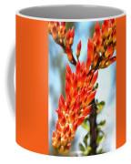 Octillo Flower. Coffee Mug