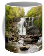 October At Bald River Falls Coffee Mug