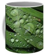 Drops Of Rain Coffee Mug
