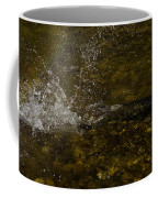 Of Fishes And Rainbows - Wild Salmon Run In The Creek Coffee Mug