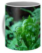 Office Art Fern Fround Forest Ferns Art Prints Baslee Troutman Coffee Mug