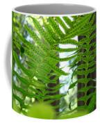 Office Art Ferns Redwood Forest Fern Giclee Prints Baslee Troutman Coffee Mug