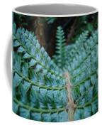 Office Art Forest Ferns Green Fern Giclee Prints Baslee Troutman Coffee Mug