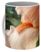 Office Art Irises Orange Iris Flowers 9 Giclee Prints Corporate Art Baslee Troutman Coffee Mug