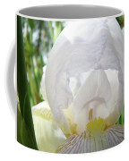 Office Art Irises White Iris Flower Floral Giclee Prints Baslee Troutman Coffee Mug