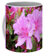 Office Art Pink Azalea Flower Garden 3 Giclee Art Prints Baslee Troutman Coffee Mug