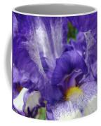 Office Art Prints Iris Flowers Purple White Irises 40 Giclee Prints Baslee Troutman Coffee Mug