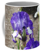 Office Art Prints Irises Flowers 46 Iris Flower Giclee Prints Baslee Troutman Coffee Mug