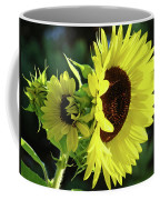 Office Art Sun Flowers Sunlit Sunflower Giclee Baslee Troutman Coffee Mug