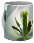 Office Art Tulip Flower Art Prints Tulips Giclee Baslee Troutman Coffee Mug