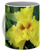 Office Art Yellow Iris Flower Irises Giclee Prints Baslee Troutman Coffee Mug