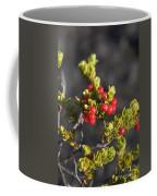 Ohelo Berries Coffee Mug