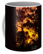 Ohia Trees At Sunset Coffee Mug