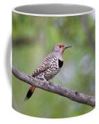 Oil Painted Northern Flicker Coffee Mug