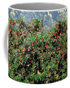 Okanagan Valley Apples Coffee Mug
