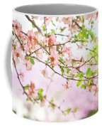 Oklahoma Spring Coffee Mug