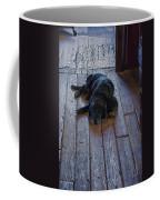 Old Dog Old Floor Coffee Mug